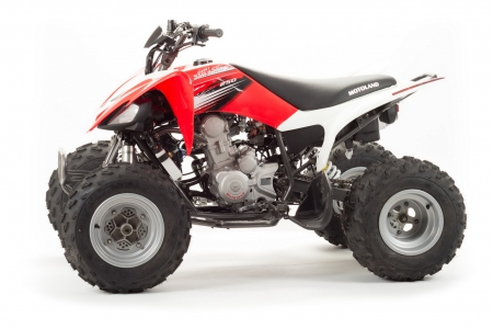 Квадроцикл MOTOLAND 250S (комплект запчастей)