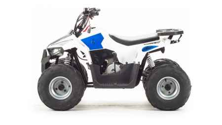 Квадроцикл MOTOLAND ATV EAGLE 110 (комплект запчастей)