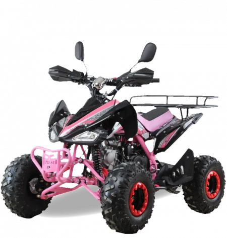 Квадроцикл MOTAX ATV T-Rex Super LUX (комплект запчастей)