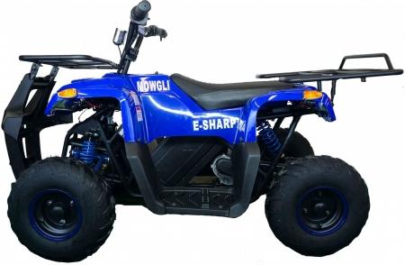 Квадроцикл MOWGLI E-SHARP (комплект запчастей)