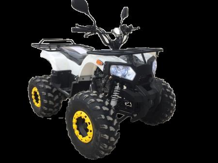 Квадроцикл HESTUR (комплект запчастей)