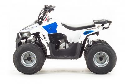 Квадрицикл ATV 110 EAGLE