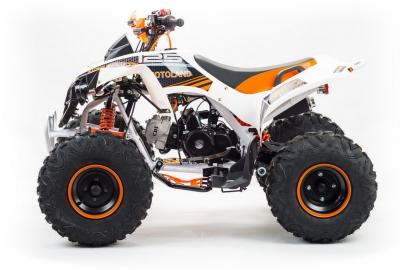 Квадрицикл ATV 125 RAPTOR