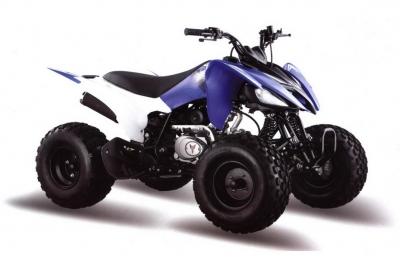 Квадрицикл ATV 150S