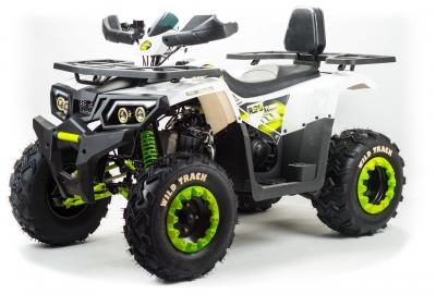 Квадроцикл MOTOLAND WILD TRACK LUX 200 (комплект запчастей)