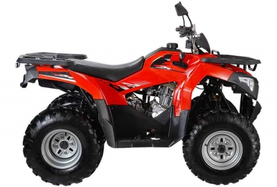 Квадроцикл WELS ATV Bison (комплект запчастей)