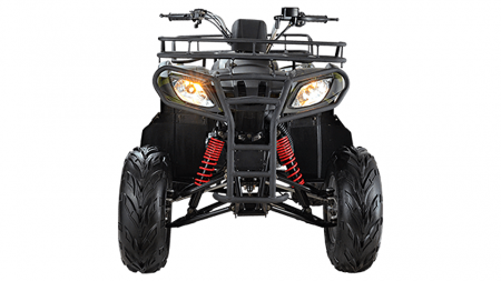 Квадроцикл WELS ATV Purga 170 (комплект запчастей)